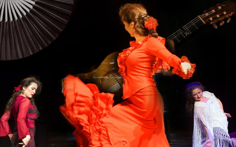 Flamenco-Shows-800-02